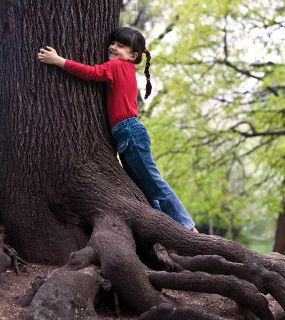 homage trees
