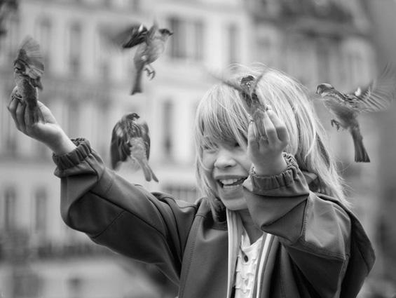 Sparrows_Paris_Ulrike_Morlock