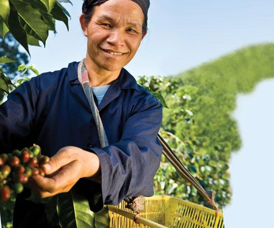 fairtrade_sustainable