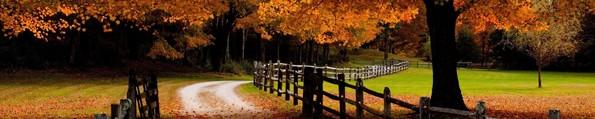 fall-color_f